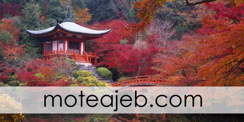 jazebe haye fogh olade japon 2 - جاذبه های گردشگری فوق العاده ژاپن