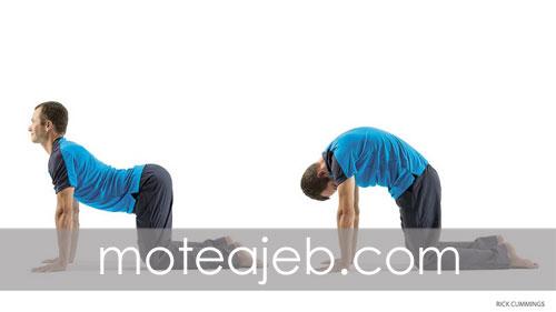 Strengthen lower back With sports Proper 1 - تقویت کمر با ورزش های مناسب