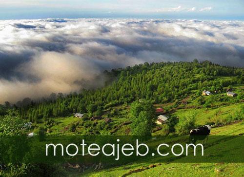 طبیعت فوق العاده زیبای مازیچال در مازندران