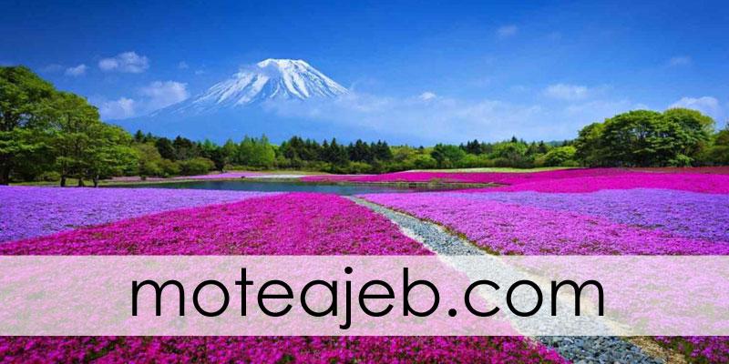 جاذبه های گردشگری فوق العاده ژاپن