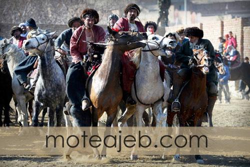 oddly-sport-buzkashi-afghan