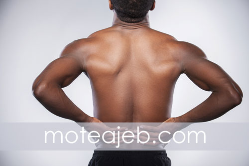 strengthen-lower-back-with-sports-proper