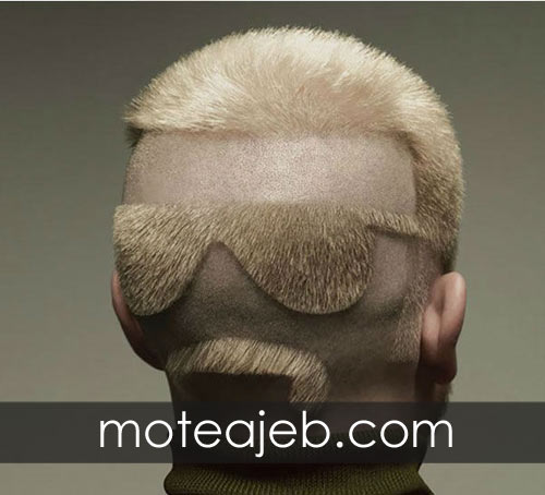 Strange-and-surprising-hairstyles