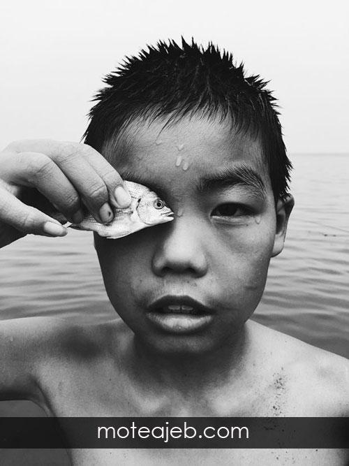 برندگان مسابقات عکاسی با ایفون