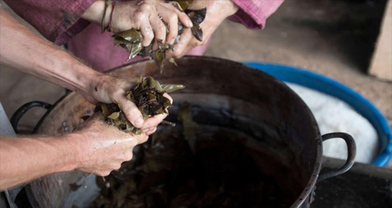 با نوشیدن معجون عجیب از بومیان آمازون، مرگ را تجربه کنید!