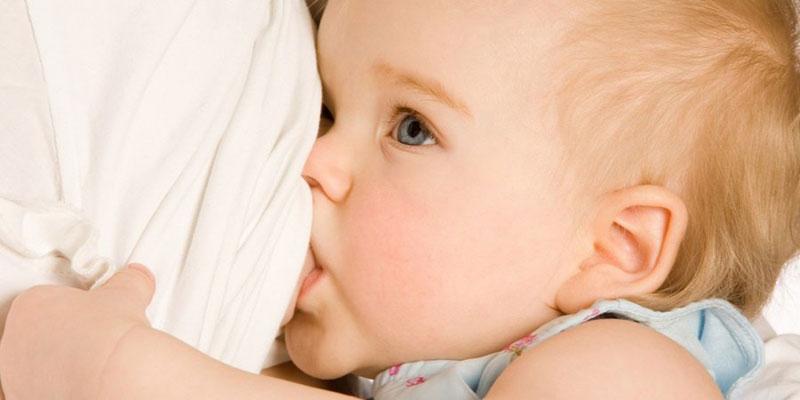 همه چیز راجب شیر مادر