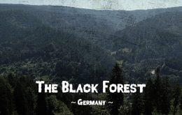 جنگل سیاه جنگلی رویایی در آلمان
